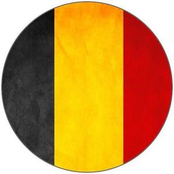 تاریخچه و سهم پارسی زبانها در سیاست بلژیک